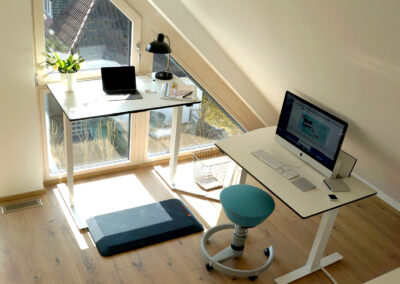 active-office-with-Swopper-blue